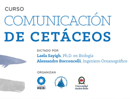 Curso Comunicación de Cetáceos
