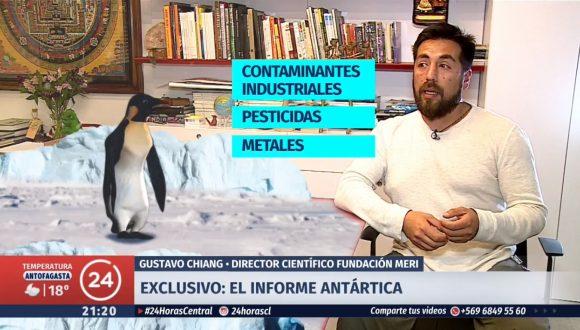 """Exclusivo: Detectan """"veneno"""" en la Antártica"""